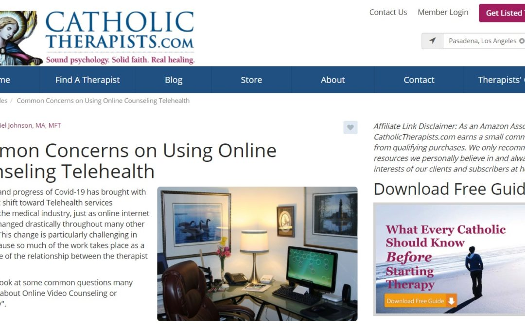 Common Concerns on Using Online Counseling Telehealth